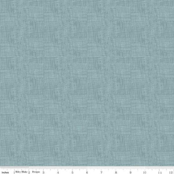 Fossil Rim 2 - Scratch, Blue - by Deena Rutter for Riley Blake