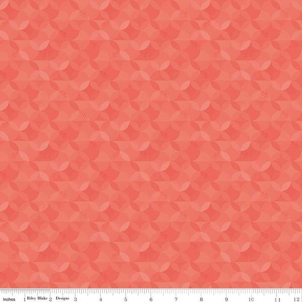 Crayola Kaleidoscope Sassy Salmon
