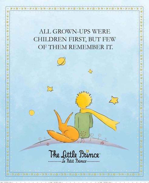The Little Prince Panel Aqua