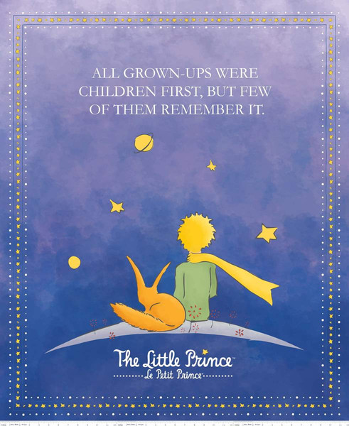 The Little Prince Panel / Navy