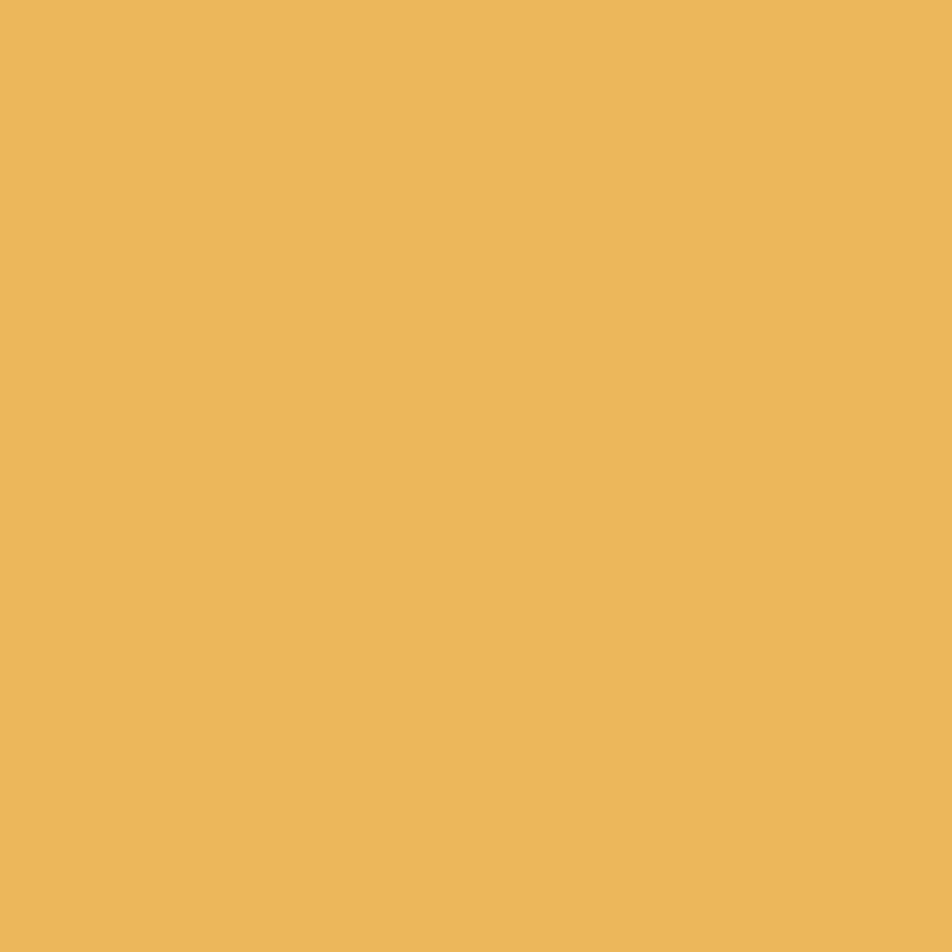 Confetti Cottons Color Daisy