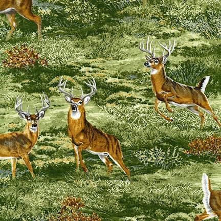 Bringing Nature Home Deer