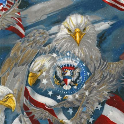 Jody Bergsma Patriots AMERICANA 100% COTTON