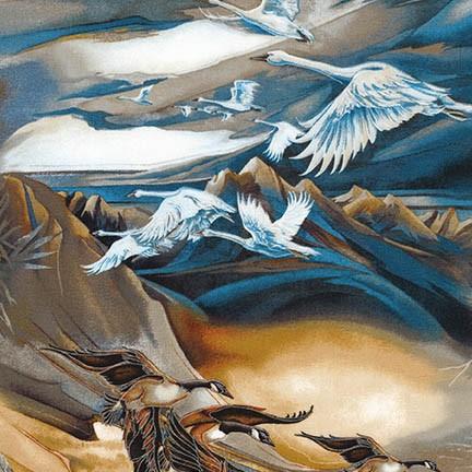 RK NAW 5 Earth Birds