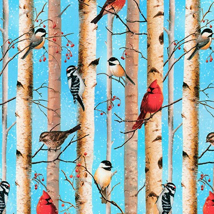 Kaufman North American Wildlife Sky Birds