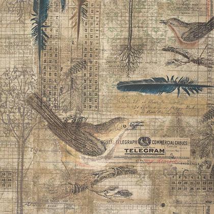 Tim Holtz - Wallflower - Aviary - Multi