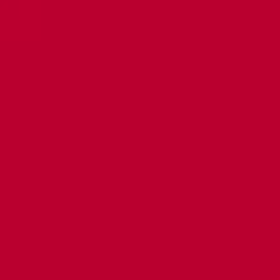 Studio E 108 in wide backing RED