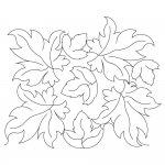 Maple Leaf 2014
