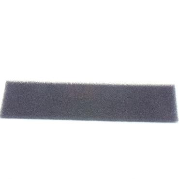 Riccar Vibrance Foam Post Filter