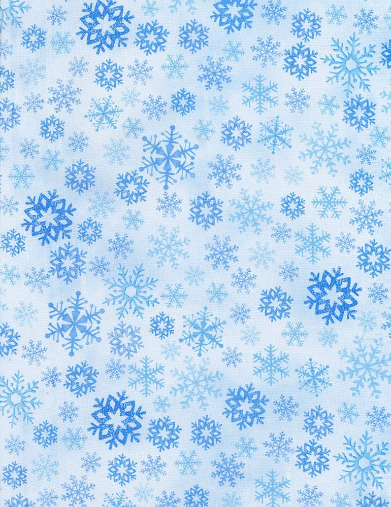 4-Snow on Blue