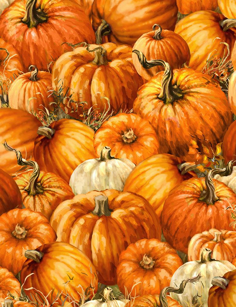 Packed Pumpkins