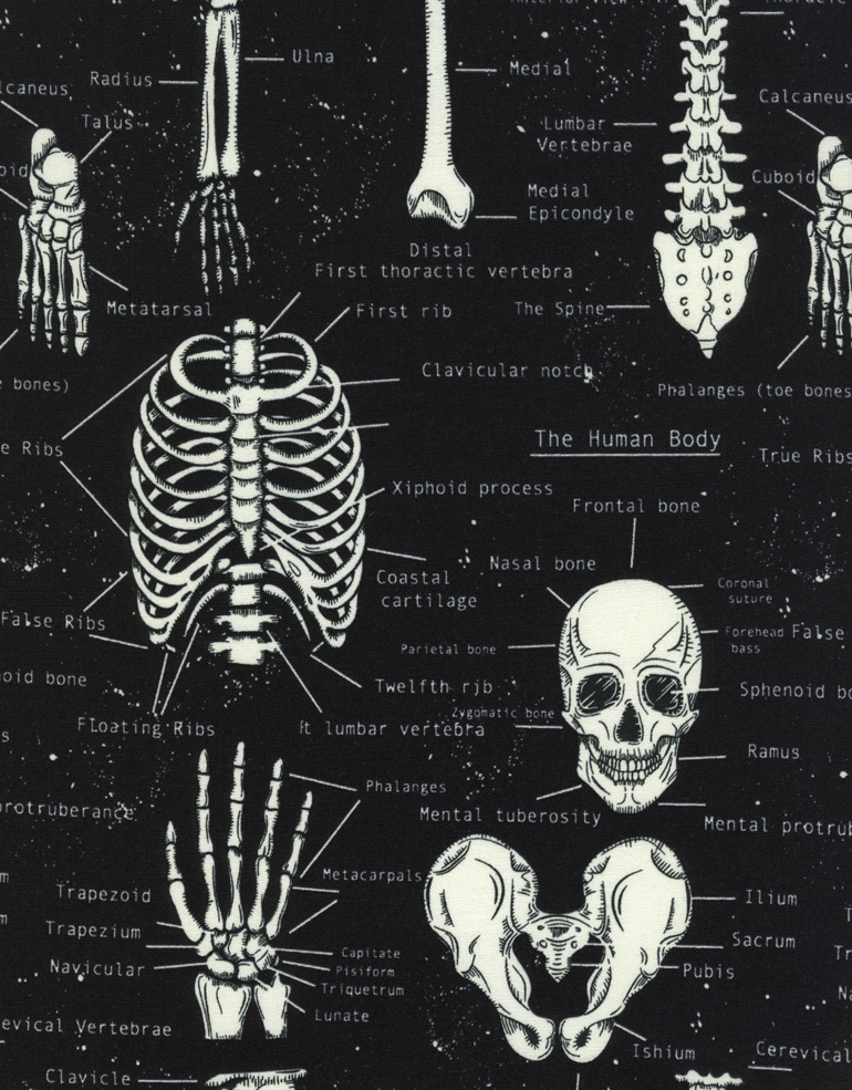 BLACK SKELETONS