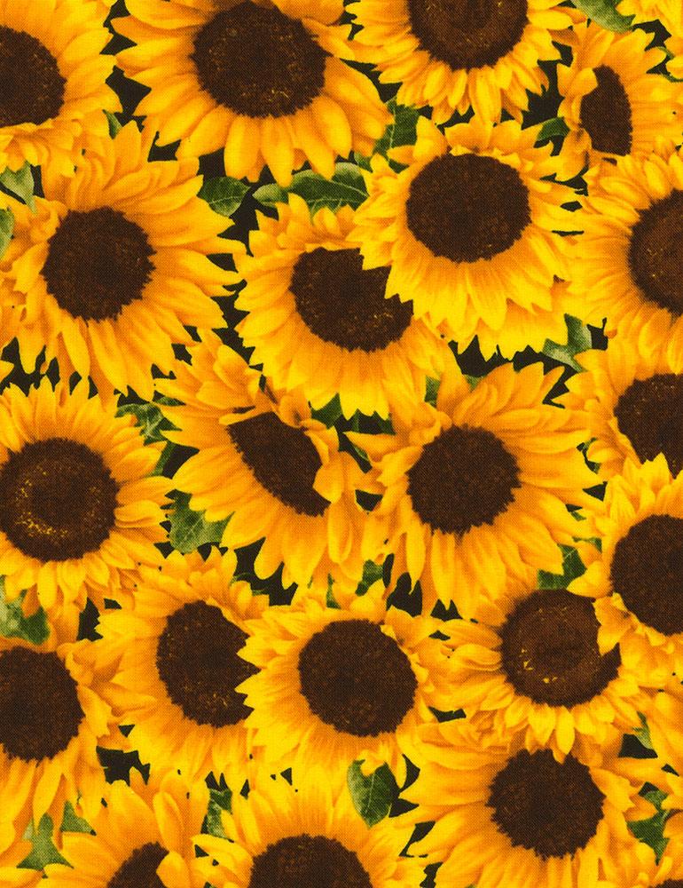 Packed Sunflowers Timeless Treasures Fleur C5253