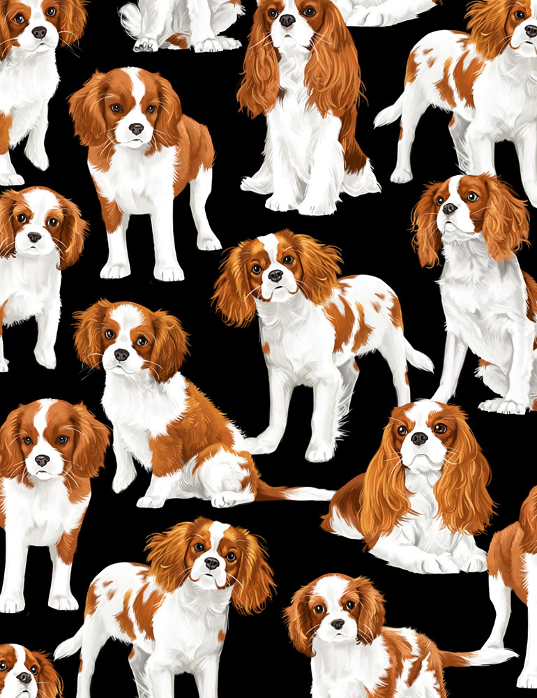 SPECIALTY FABRICS:   Cavalier King Charles Spaniels on Black by Timeless Treasures