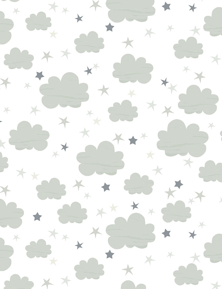 Clouds Flannel CF6291
