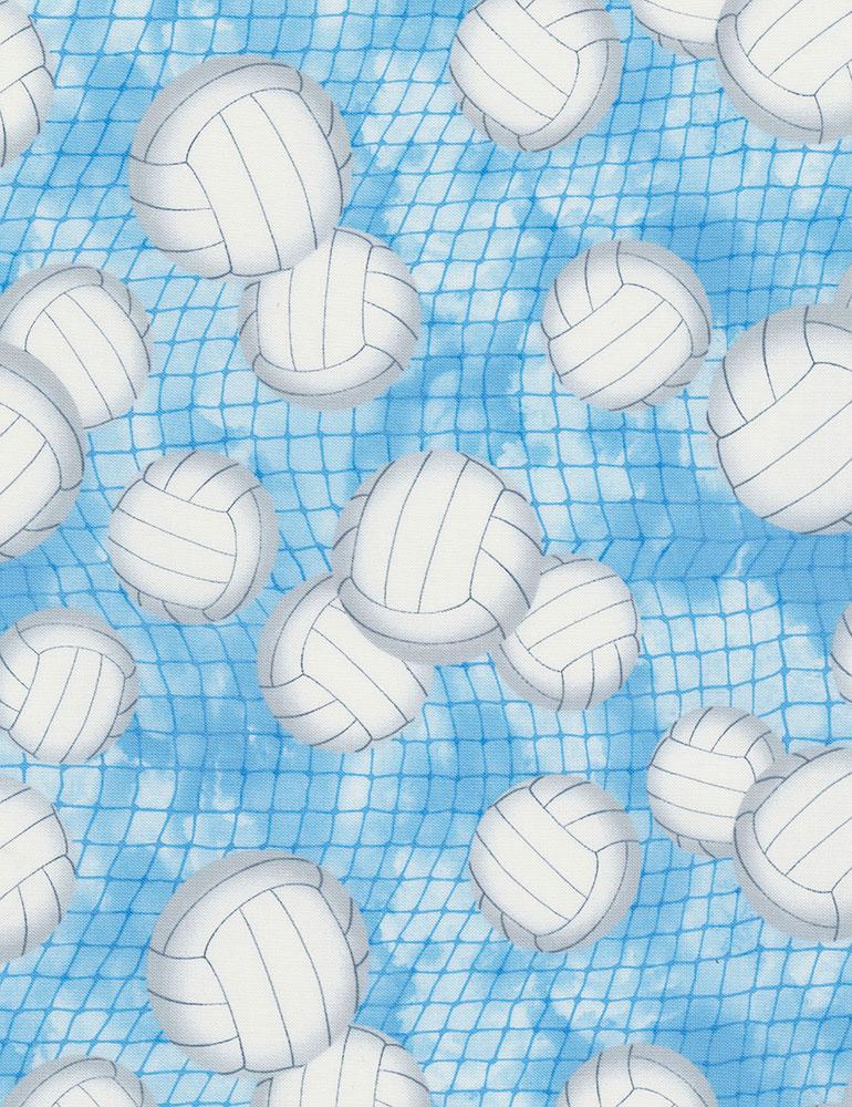 Volleyballs