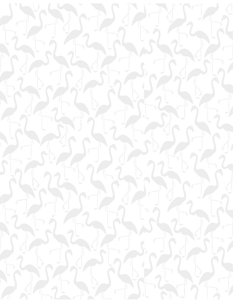 TT- White On White Flamingos