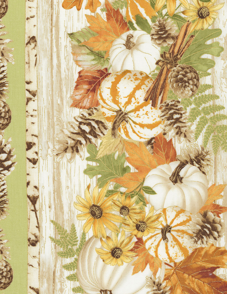 Fall Foliage CM6851 Pumpkin and Flower Stripe