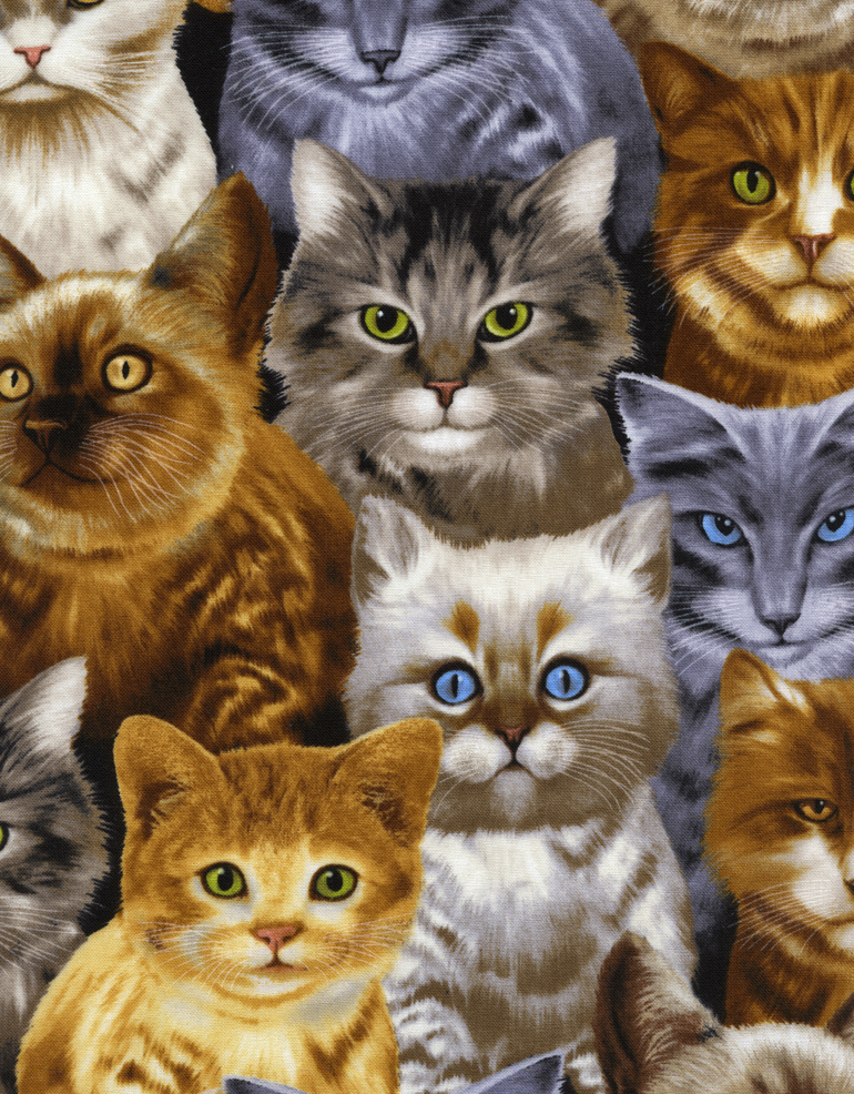 Cats by Michael Searle