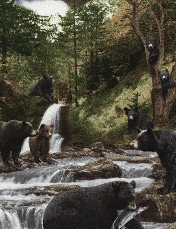 BEAR BLACK BEARS C2683