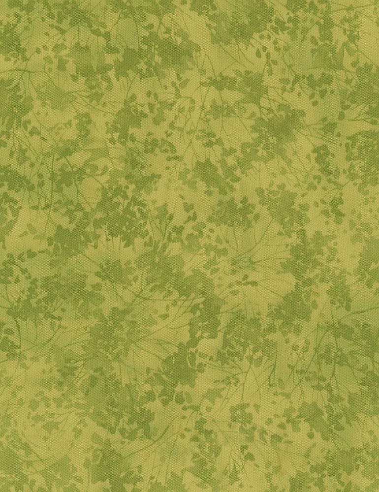 Birch Texture Green