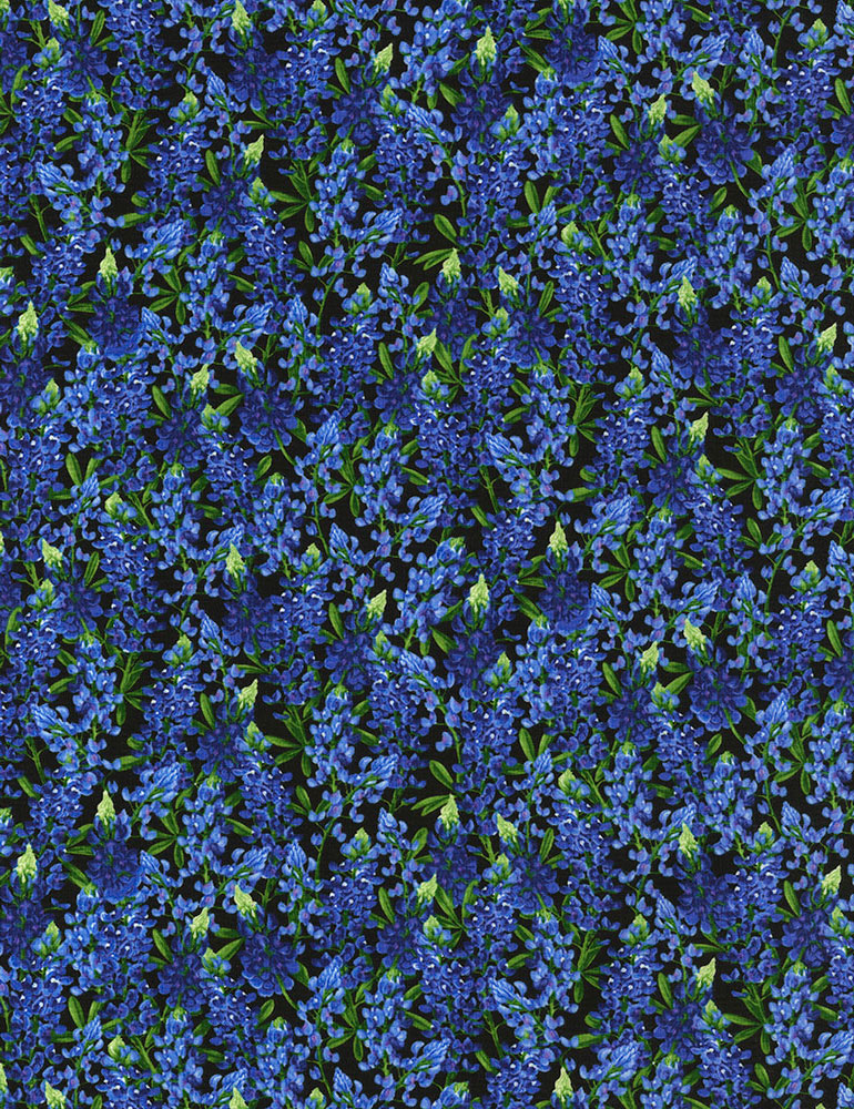 Reverie Bluebonnets on Black