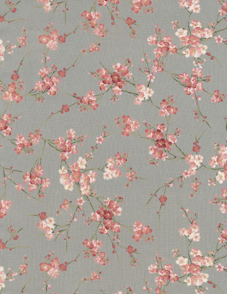 Sakura - Blossoms