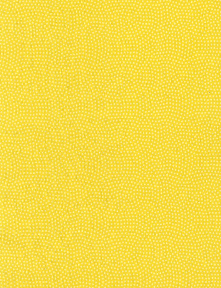 Spin Basic - Lemon