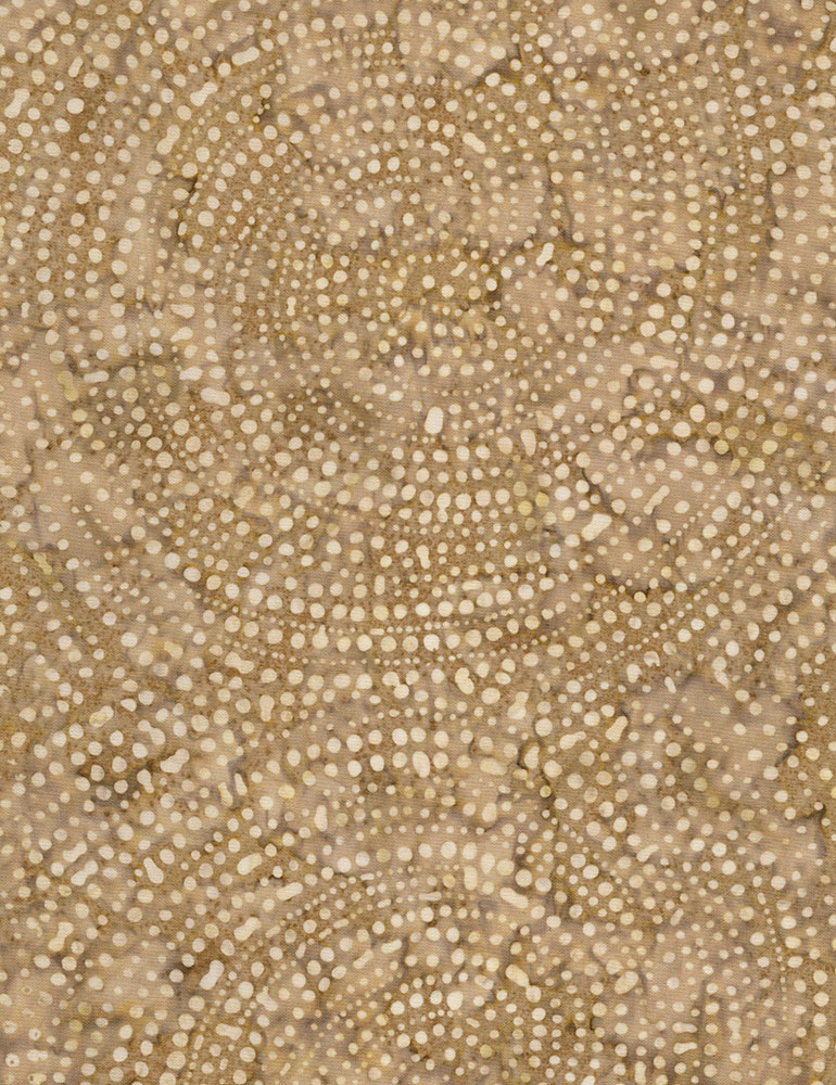 Stone dotty spiral batik TONGA-B2336-STONE Color Wheel 1 Tonga Batik Timeless Treasures
