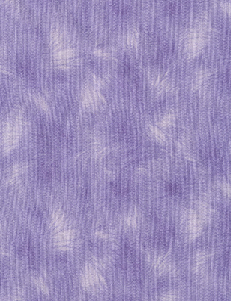 Viola Texture - Wisteria