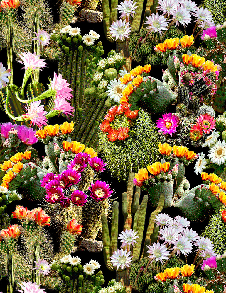Packed Cacti Flowers
