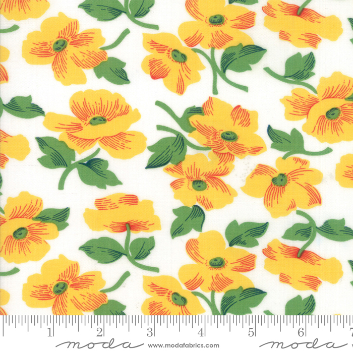 Red Rover Sunshine Flowers