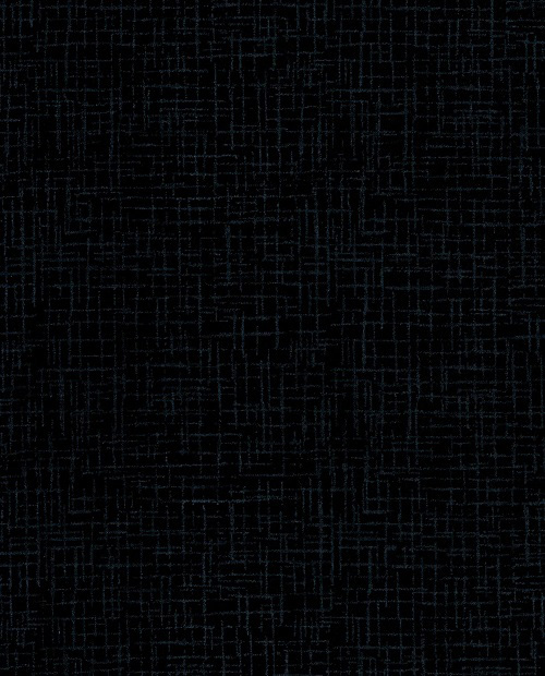 Betula - Backings RI-8064-10 Black Westrade