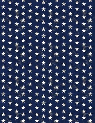 American Valor Navy Stars 84433-414