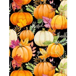Pumpkin A/O Black