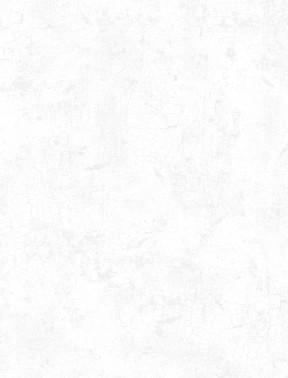 White on White Crackle 89162-100