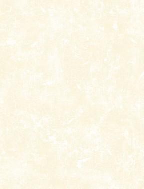 89162-112 Bone Crackle Essentials Wilmington Prints