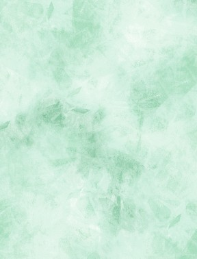 Cracked Ice Flannel - Pastel Green