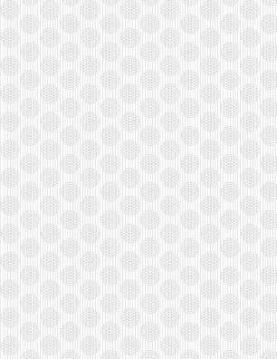 White on White 1817 39086 100