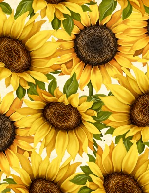 Sunset Blooms large sunflowers 68432 152