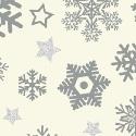 Snow Flake Silver