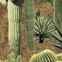 Windham Fabrics - Adobe by Whistler Studios - Umber Cacti